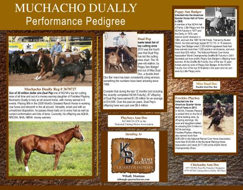 Muchacho Dually Performance Pedigree